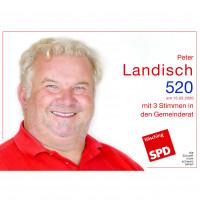 Peter Landisch